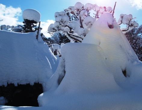 山形の冬その1